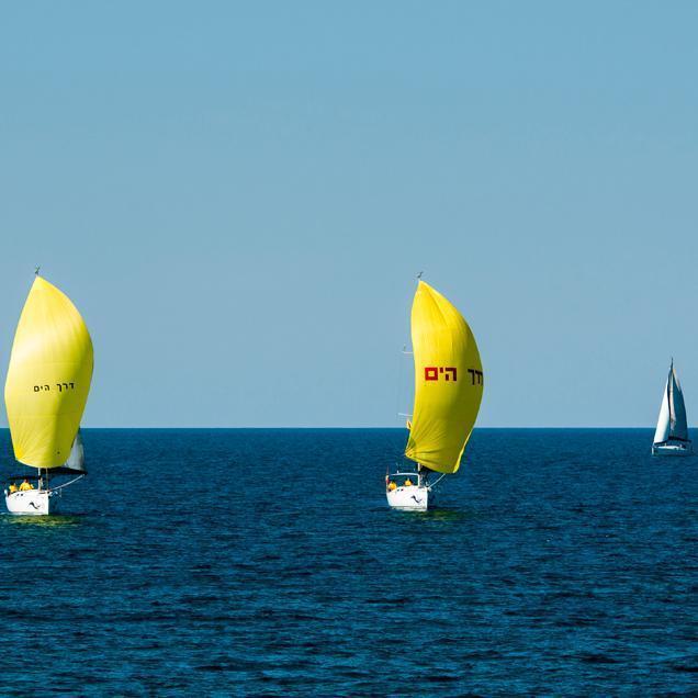 שייט תחרותי דרך הים