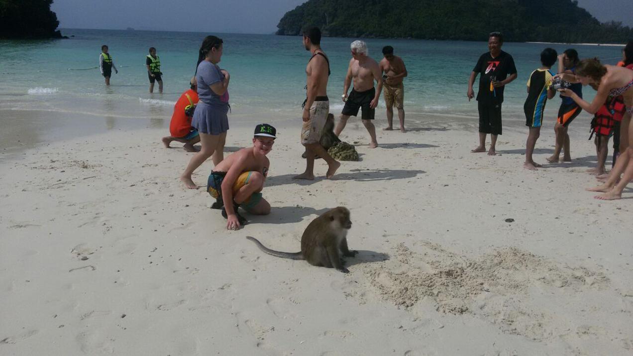 בחוף הים של תאילנד עם קוף