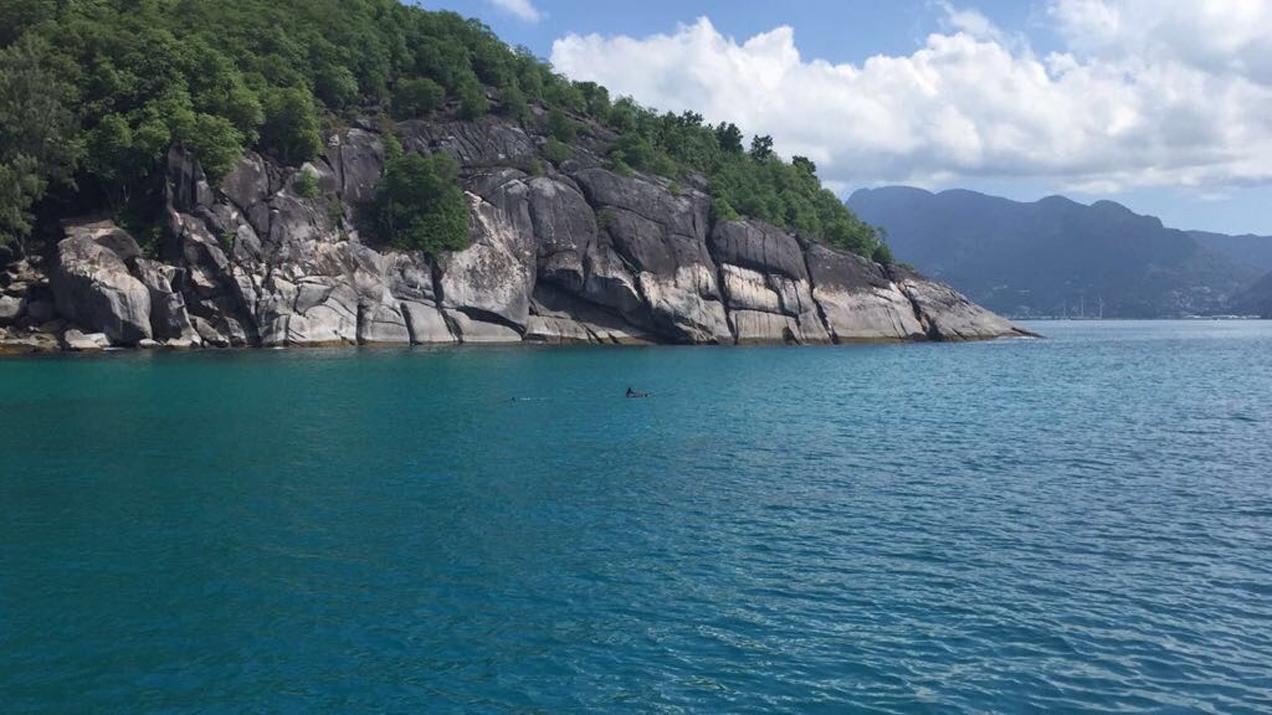 הפלגה באיי הסיישל -דך הים