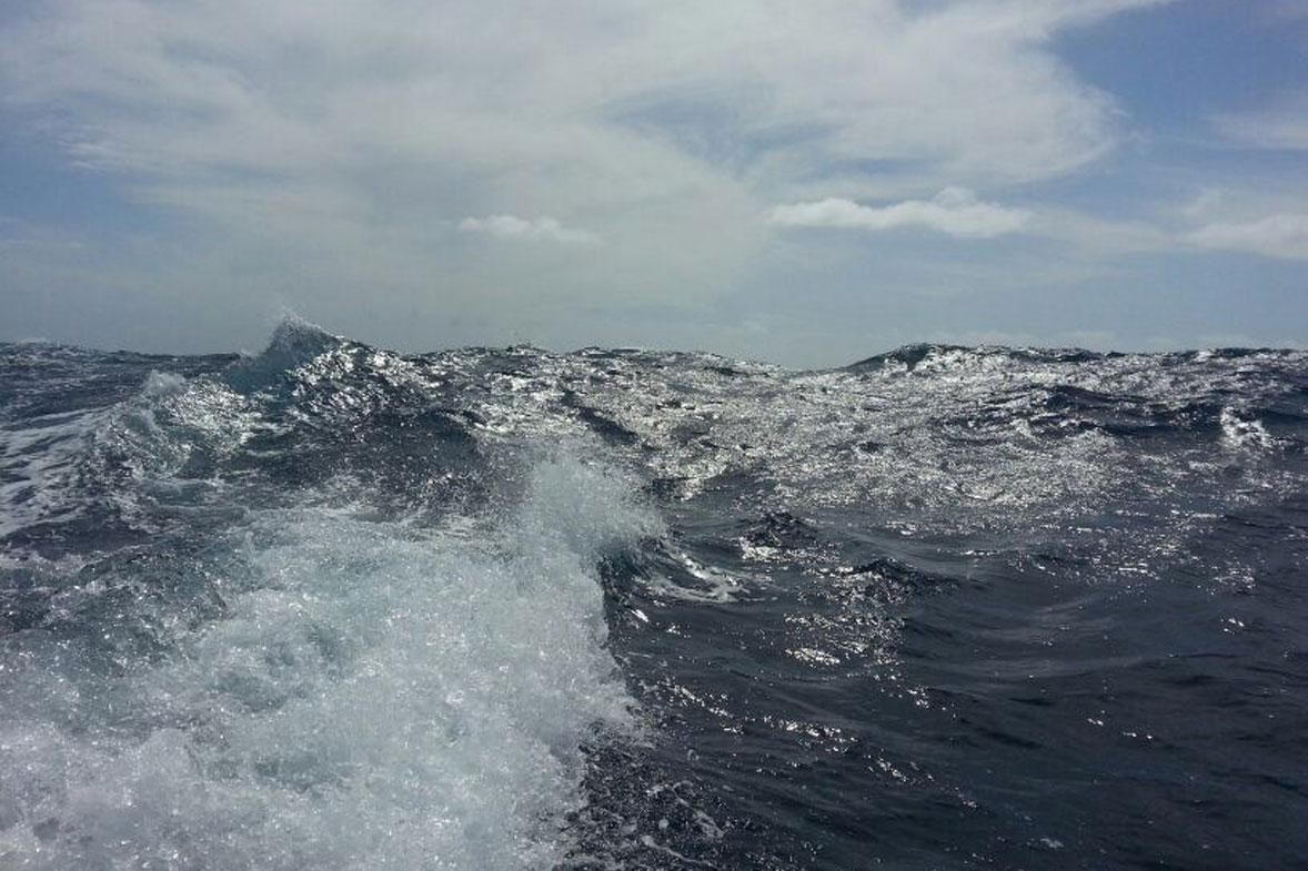 ים בסערה
