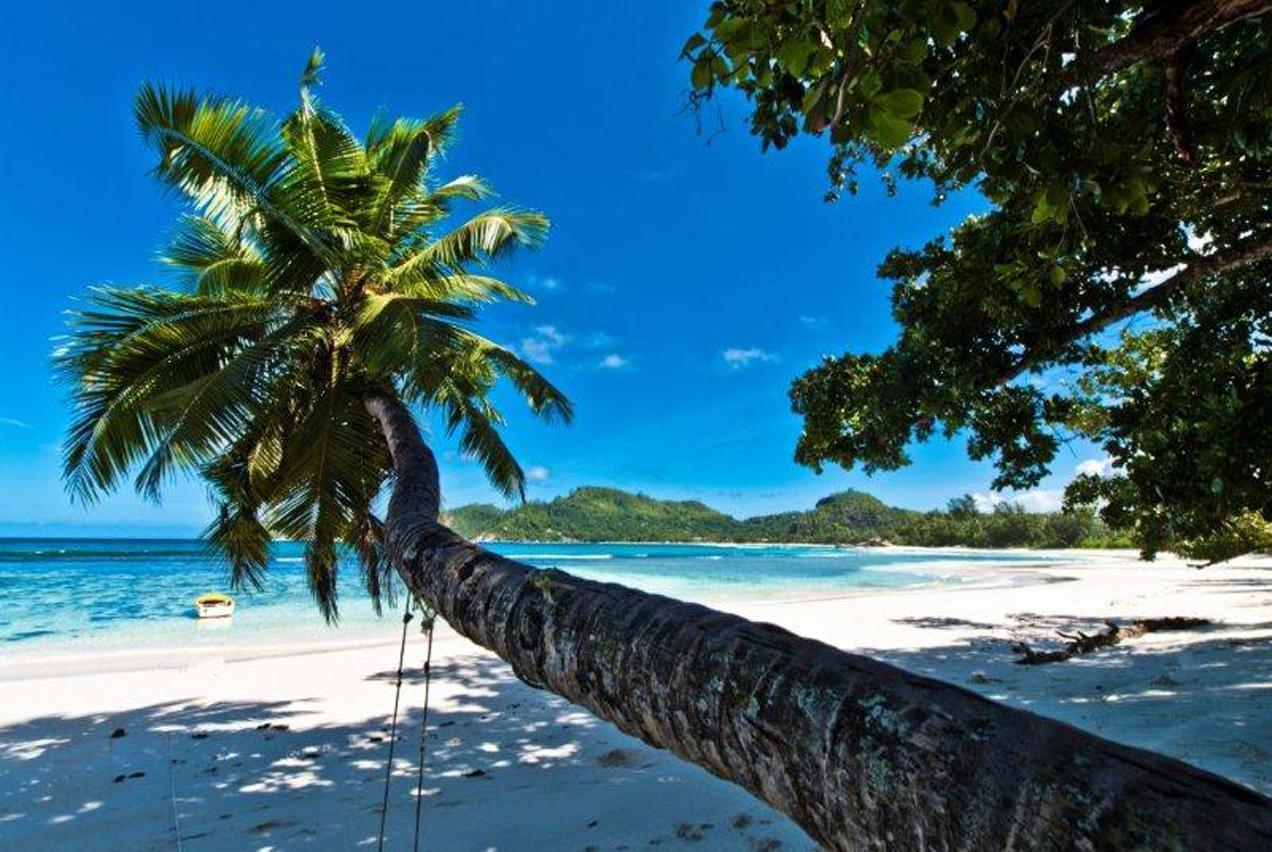 נוף אקזוטי באיי סיישל - הים דרך הים